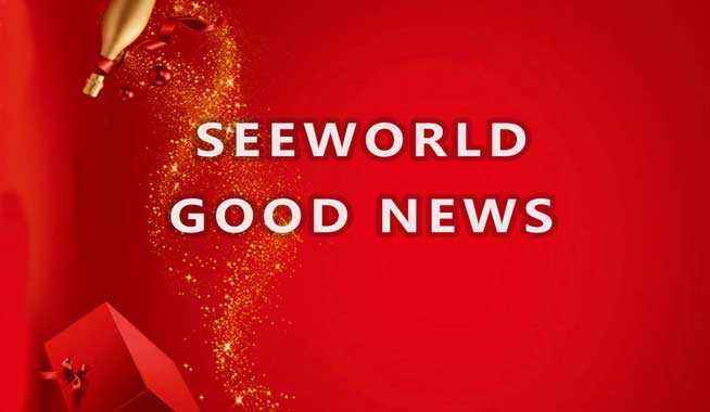 Good News — Guangzhou SEEWORLD Is Recognized As ABlockchain Enterprise